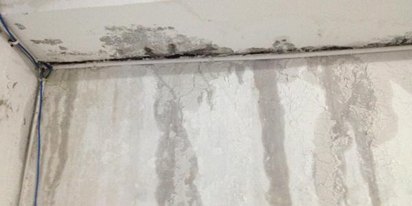 厨卫墙面渗漏水解决方案